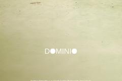 dominio_cartel