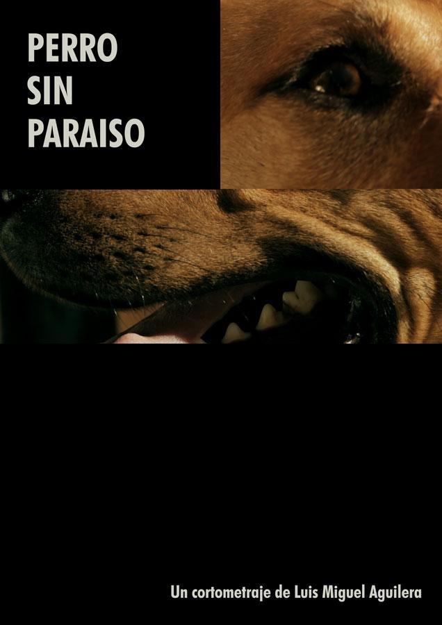 cartel_perro_sin_paraiso